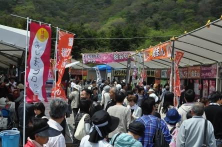 富士芝桜まつり (45)
