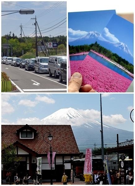 富士芝桜まつりa]
