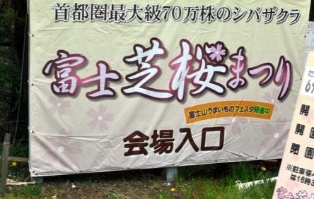 富士芝桜まつり (25)