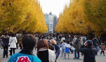 いちょう祭り2009 (23)