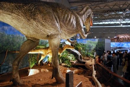 恐竜展 (16)