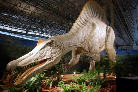 恐竜展 (14)