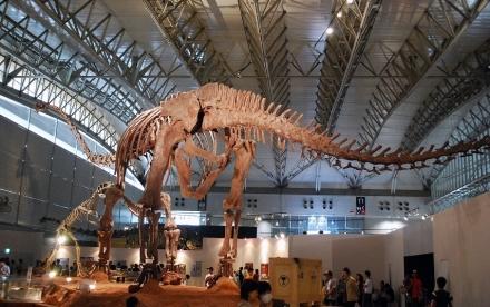 恐竜展 (13)