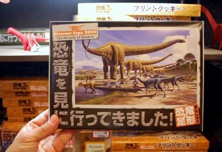 恐竜展 (19)