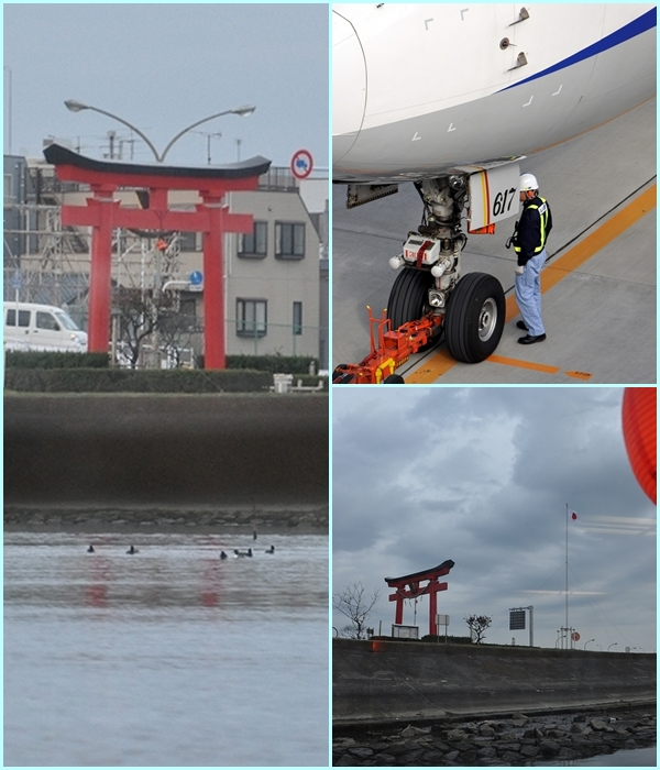 羽田空港 H.jpg