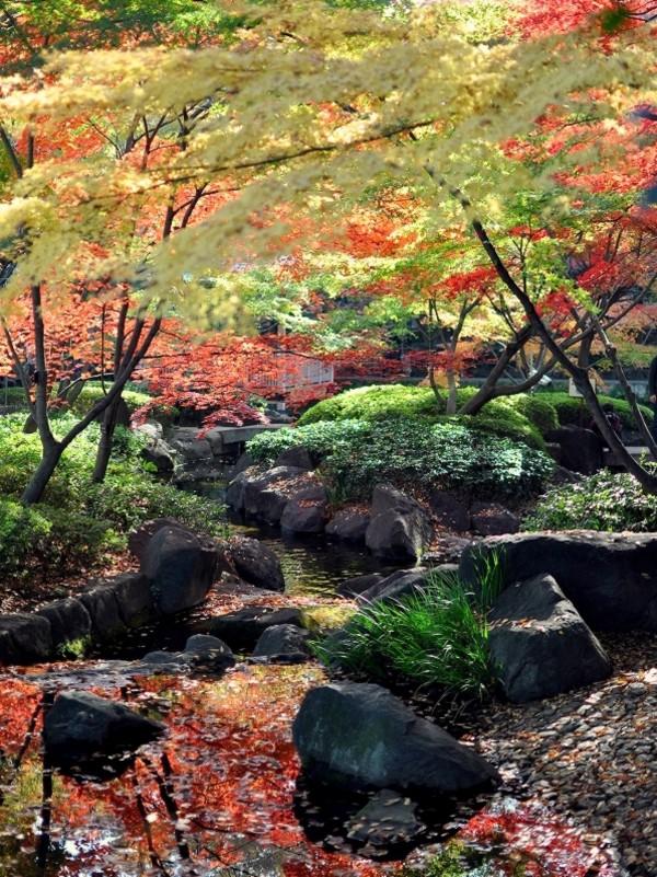 大田黒公園 (6).jpg