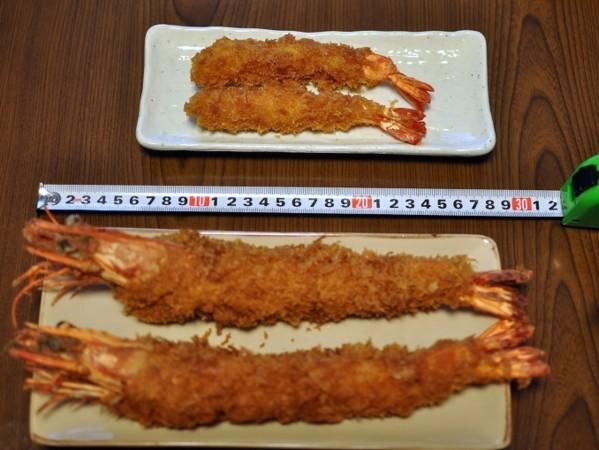 角上魚類 (48).jpg
