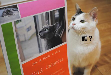 11-12-11-1.jpg
