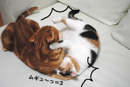 12-1-25-2.jpg