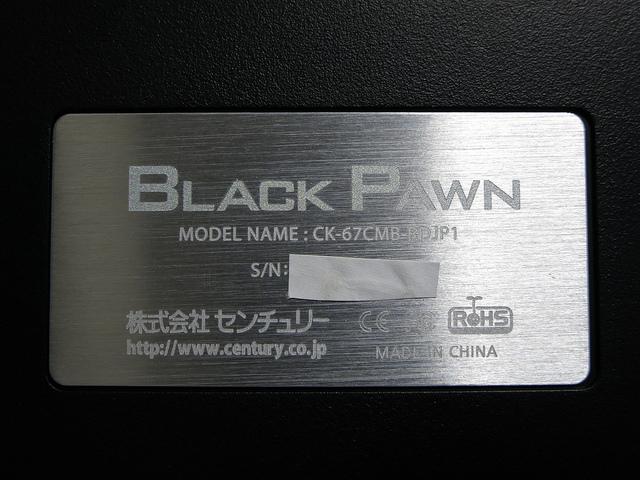 BLACK_PAWN_26.jpg