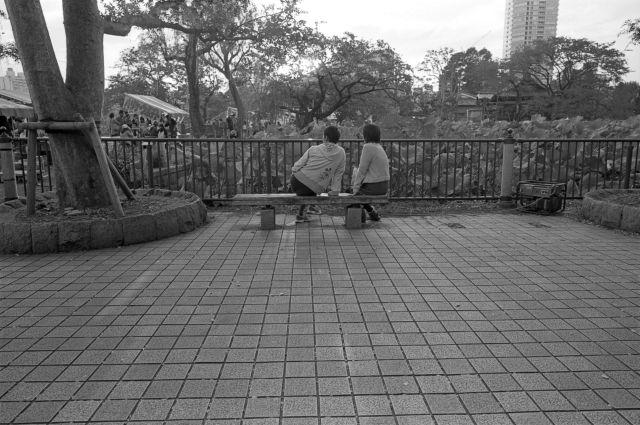 カップル@不忍池02c