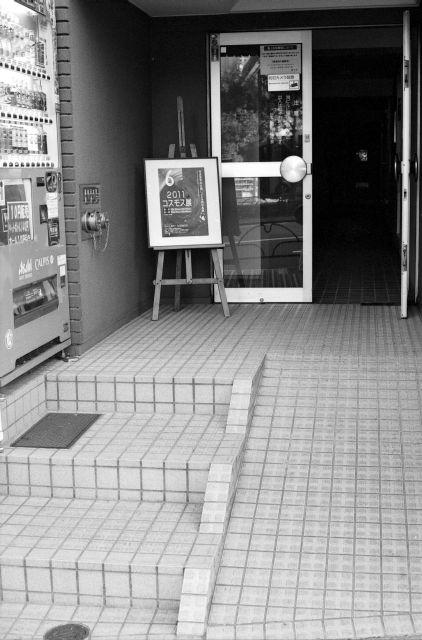コスモス展01b
