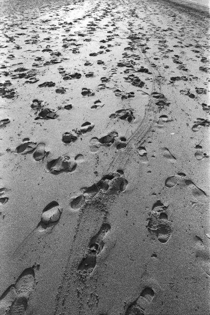 浜辺のひととき02a