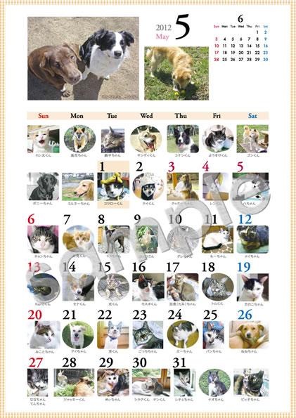2012年「ワンコ・ニャンコ366日カレンダー」5月