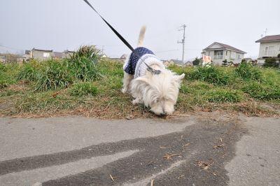 blog_231115_03.jpg