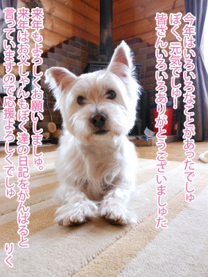 blog_231231_1.jpg