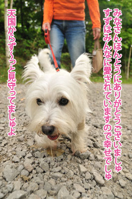 blog_231231_3.jpg