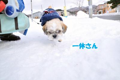 blog_240101_8.jpg