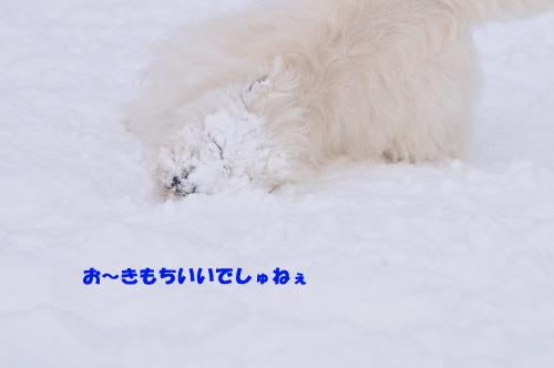 blog_240131_4.jpg