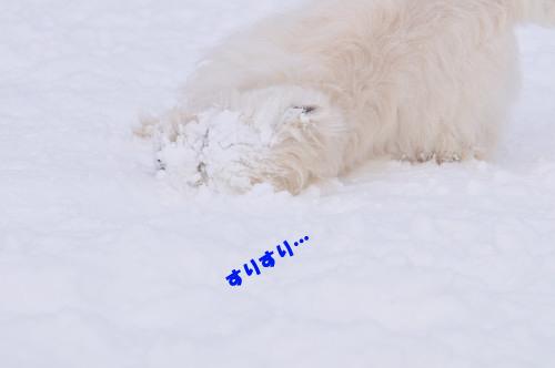 blog_240131_5.jpg