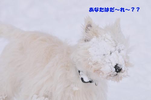 blog_240131_6.jpg