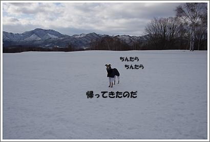 20140211_13.jpg
