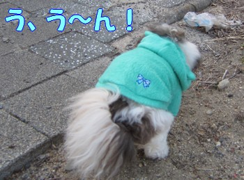 0107-14_20120108165951.jpg