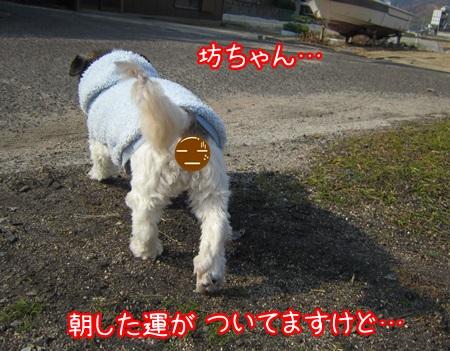 1204-04_20131204132855e65.jpg