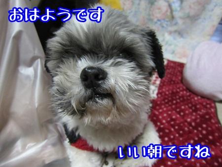 1208-01_201312082001243a1.jpg