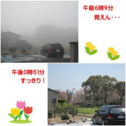 0417-霧