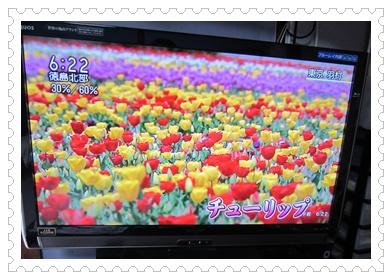 0421-テレビ