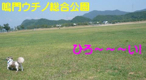 628D-2.jpg