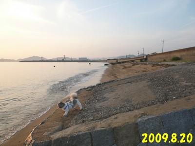 820-04.jpg
