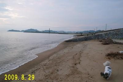 829-03.jpg