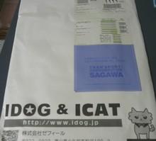 1101-a1.JPG
