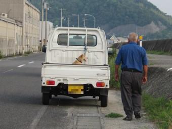 ふくちゃん (2).JPG