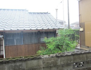 雨.JPG