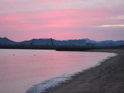 ピンク色.jpg