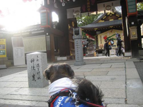 130106ふうたと護王神社①