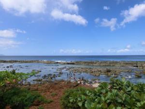オアフ島北部の景色