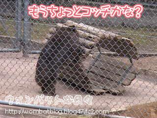 f0498(トンネル移動中02)