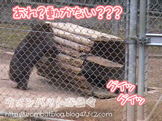 f0500(トンネル移動中04)