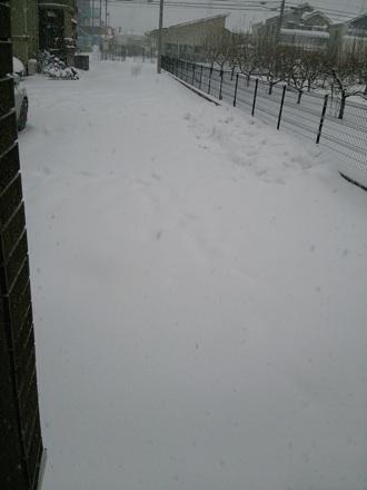 20140208_snow3.jpg