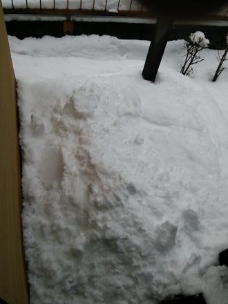 20140209_snow1.jpg