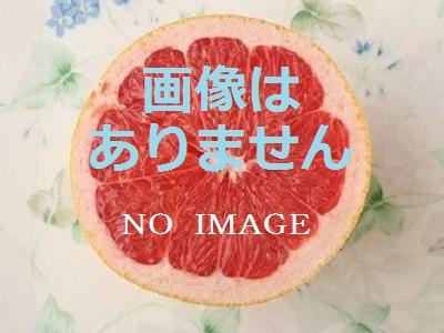 画像はありません