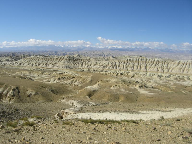 西チベット18