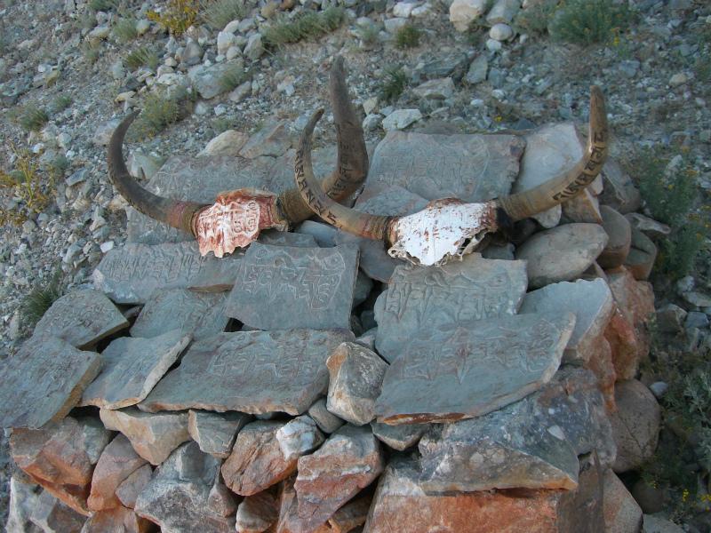 西チベット22