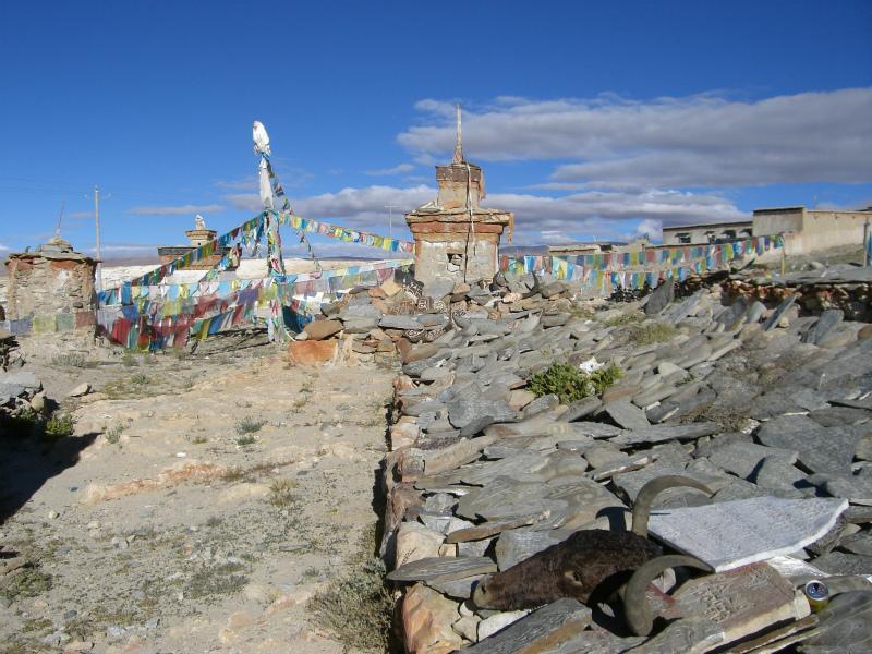 西チベット23