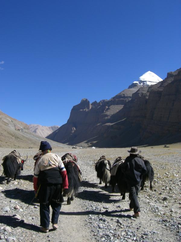 西チベット30