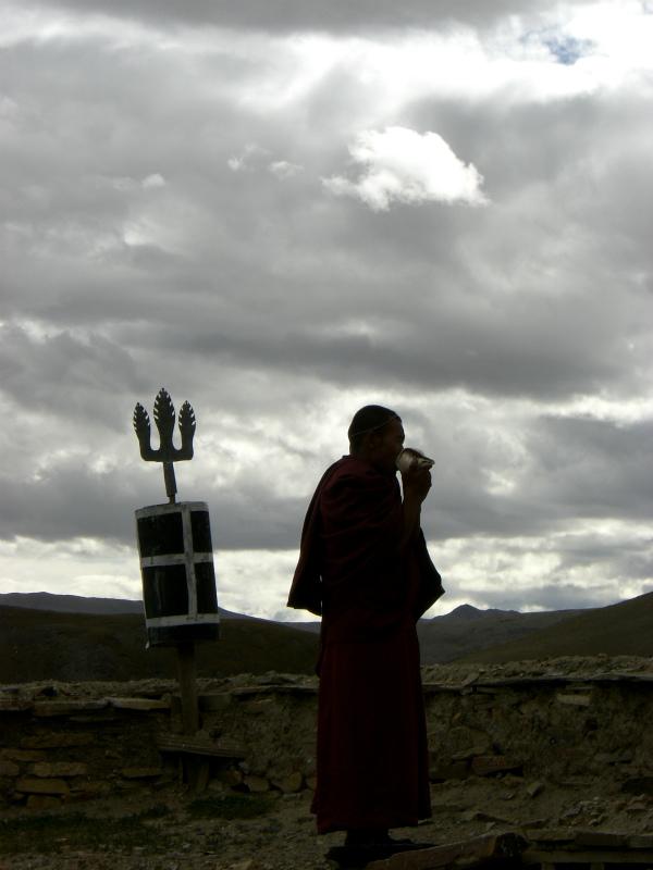 西チベット44